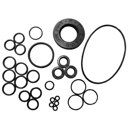 OIL SEAL KIT [ LW HOLLOW SHAFT]